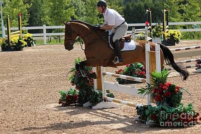 Photograph - 1jumper160 by Janice Byer