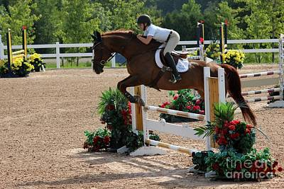 Photograph - 1jumper173 by Janice Byer