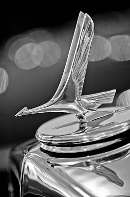 1932 Photograph - 1932 Studebaker Dictator Custom Coupe Hood Ornament -0850bw by Jill Reger