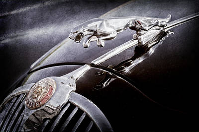 1964 Photograph - 1964 Jaguar Mk2 Saloon Hood Ornament And Emblem by Jill Reger