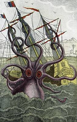 Kraken Photograph - 19th Century French Engraving by Cci Archives