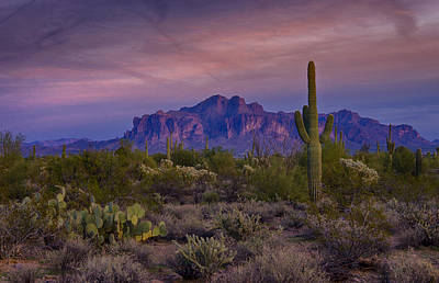 The Superstitions Photograph - A Beautiful Desert Evening  by Saija  Lehtonen