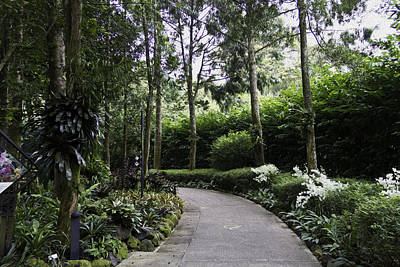 A Curved Walking Path Inside The National Orchid Garden In Singapore Art Print by Ashish Agarwal