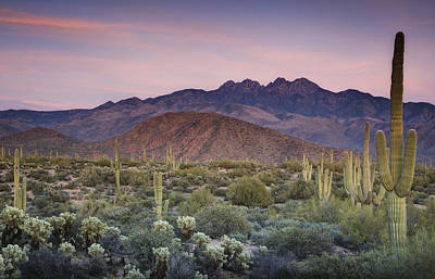 Southwest Landscape Photograph - A Desert Sunset  by Saija  Lehtonen