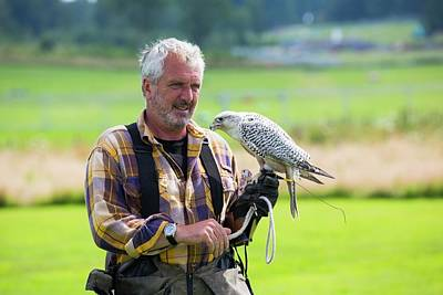 Gyr Falcon Photograph - A Falconry Display by Ashley Cooper