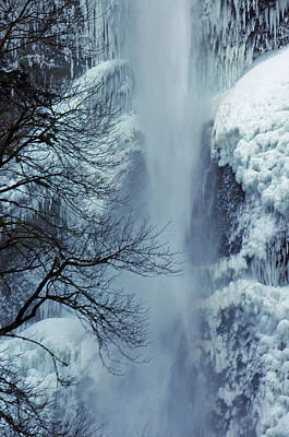 A Frozen Moment Print by Ruth Taylor