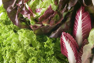 Lettuce Photograph - A Selection Of Lettuces And Radicchio (detail) by Foodcollection