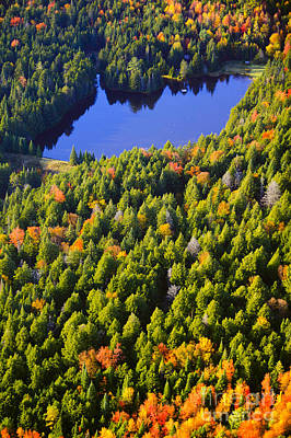 Photograph - Aerial View Of Fall Foliage In Vermont by Don Landwehrle