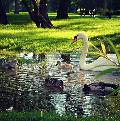 All In The Family Print by Cyryn Fyrcyd
