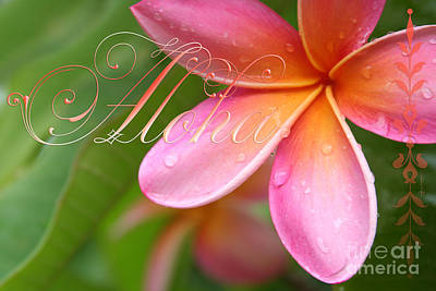 Photograph - Aloha by Sharon Mau