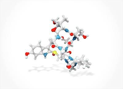 Toxin Photograph - Alpha-amanitin Toxin Molecule by Ramon Andrade 3dciencia