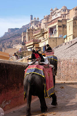 Amer Photograph - Amber (or Amer) Palace, Near Jaipur by Charles O. Cecil