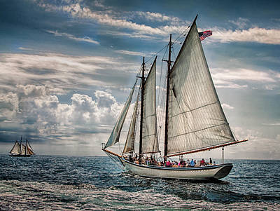 Windjammer Photograph - American Eagle by Fred LeBlanc
