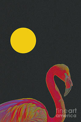 Seagull Mixed Media - American Pink Flamingo by Celestial Images