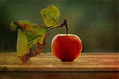 Eating Mixed Media - Apple by Heike Hultsch