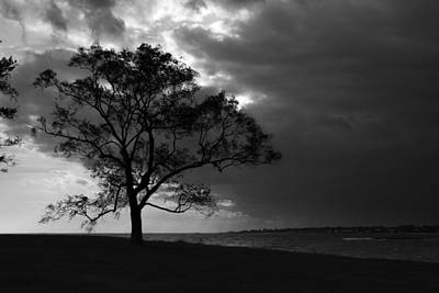 Photograph - Approaching Storm by David Freuthal