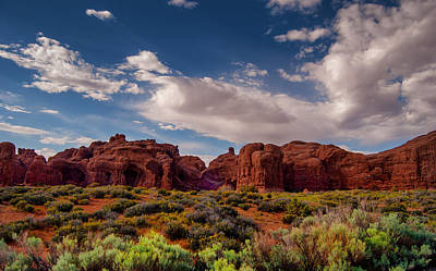 Photograph - Arches National Park by Sandra Selle Rodriguez