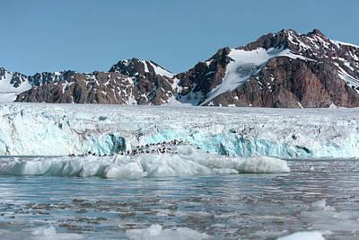 Arctic Landscape Art Print