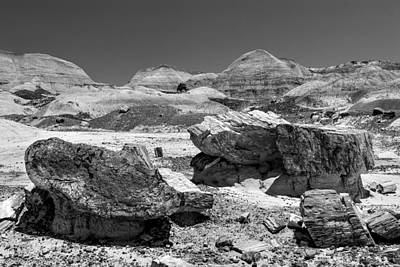 Photograph - Arizona Petrified Forest National Park by Bob and Nadine Johnston