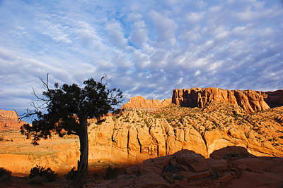 Southwest Photograph - Arizona Red Rock by Michael J Bauer