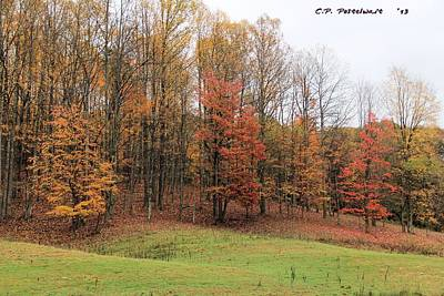 Photograph - Autumn Color by Carolyn Postelwait