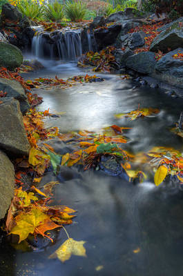 Autumn Creek Art Print by Matt Dobson