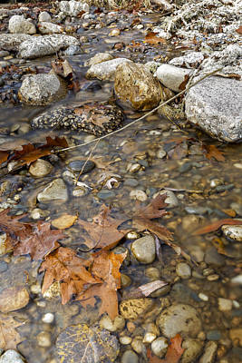 Photograph - Autumn Creek by Peter Lakomy
