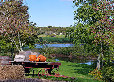 Photograph - Autumn Scenery by Janice Drew