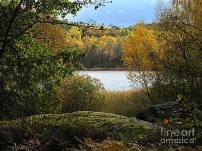 Photograph - Autumn Lake View by Lutz Baar