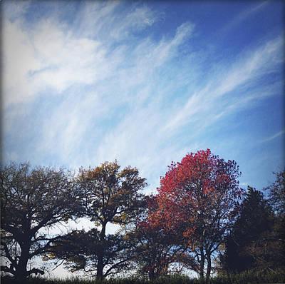 Autumn Art Print by Les Cunliffe