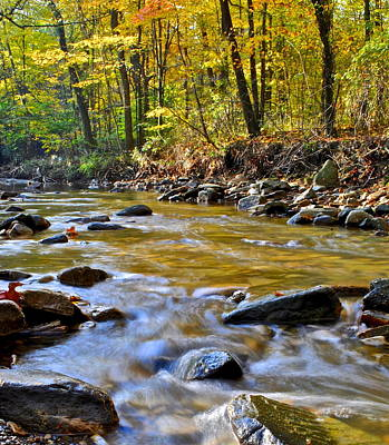 Autumn Stream Art Print by Frozen in Time Fine Art Photography