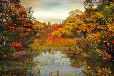 Wetlands Photograph - Autumn Wetlands by Jessica Jenney