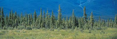 Banff National Park Alberta Canada Art Print
