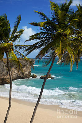Photograph - Barbados Beach by Brian Jannsen