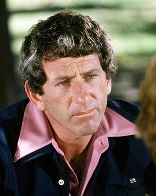 Barry Photograph - Barry Newman In Petrocelli  by Silver Screen