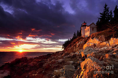 Photograph - Bass Harbor Lighthouse by Brian Jannsen