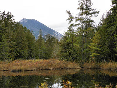 Photograph - Baxter State Park 16 by Gene Cyr