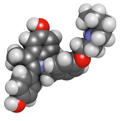Molecule Photograph - Bazedoxifene Osteoporosis Drug Molecule by Molekuul