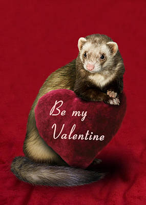 Photograph - Be My Valentine Ferret by Jeanette K