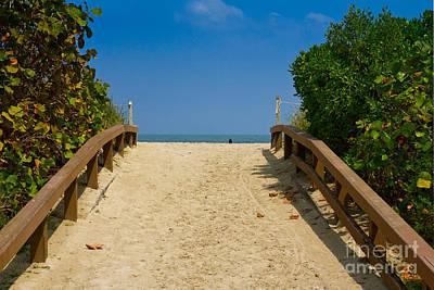 Photograph - Beach Path by Les Palenik