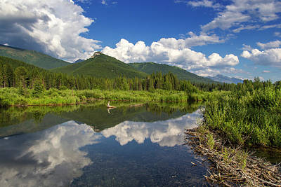Beaver Pond Photograph - Beaver Pond Along The Flathead River by Chuck Haney