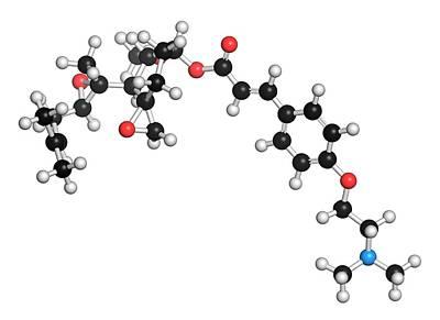 Beloranib Obesity Drug Molecule Art Print by Molekuul