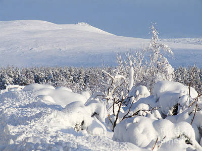 Photograph - Ben Rinnes - Snow  by Phil Banks