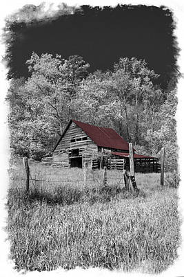Infared Photograph - Big Red by Debra and Dave Vanderlaan