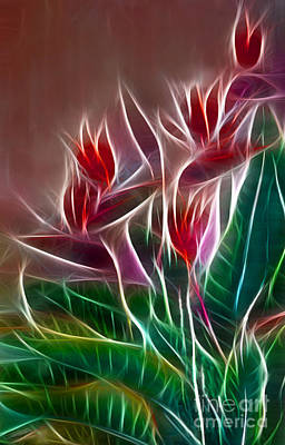 Digital Art - Bird Of Paradise Fractal by Peter Piatt