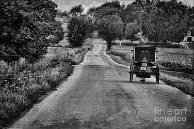 Amish Photograph - Black And White Buggy by David Arment