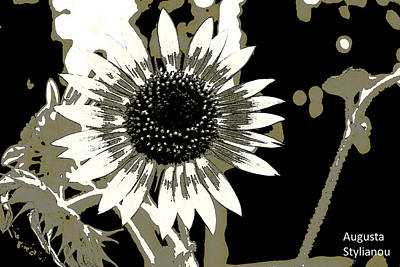 Yellow And Orange Sunflower Photograph - Black And White Flowers by Augusta Stylianou