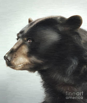 Kodiak Digital Art - Black Bear by Aleksey Tugolukov