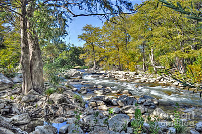 Guadalupe River Art Print by Savannah Gibbs