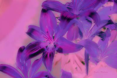Photograph - Blooming Lily by Gunter Nezhoda